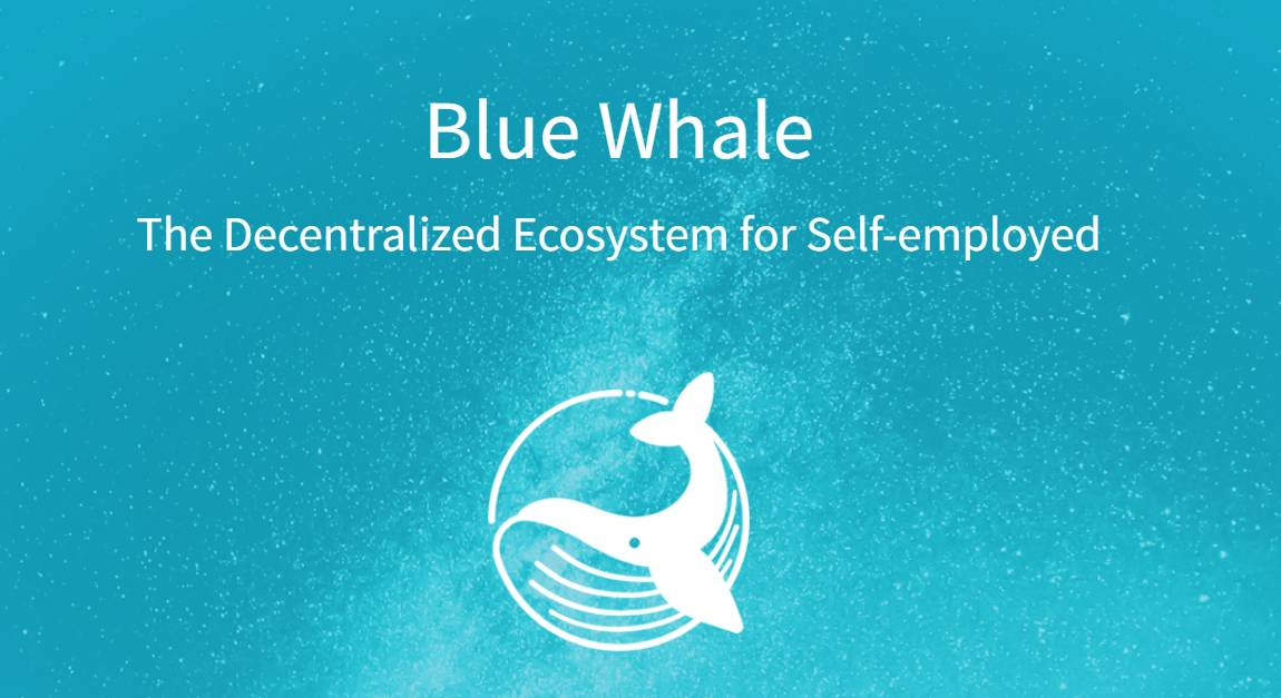 Blue-Whale-banner
